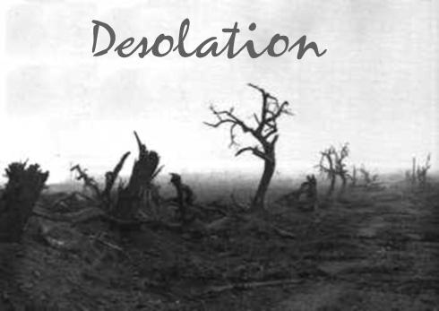 03.08.2009 Desolation in the U.S.
